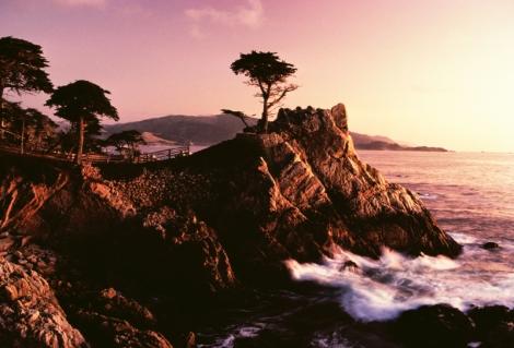 landscapes1